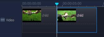 split a video